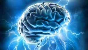 Neuromarketing y el comportamiento de los consumidores